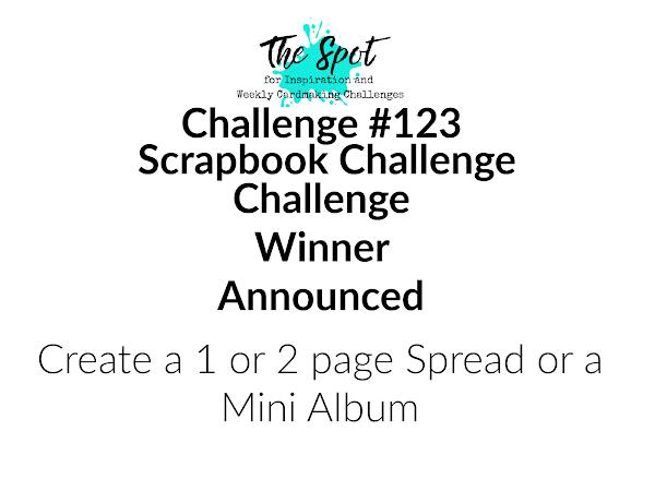 Challenge #123 Winner