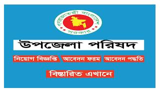 উপজেলা পরিষদ ও নির্বাহী অফিসারের কার্যালয়ে নিয়োগ বিজ্ঞপ্তি ২০২১ - Upazila Parishad and Nirbahi Officer Job Circular 2021
