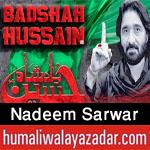 http://www.humaliwalayazadar.com/2012/07/nadeem-sarwar-audio-nohay-1984-2012.html