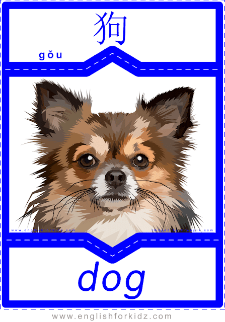 Dog - printable English-Chinese flashcards - pets