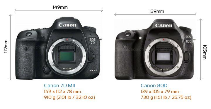 Michael Daniel Ho - The Wildlife Ho-tographer: Canon EOS-7D Mark II