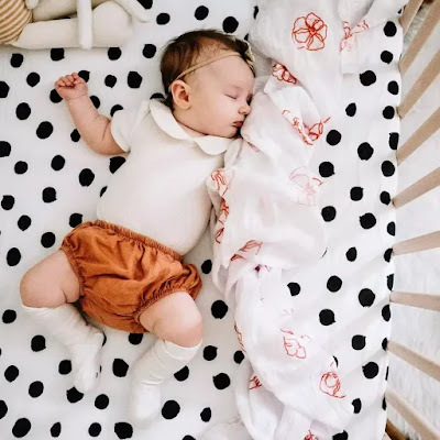11+ Premium Best Kickee Print Fitted Sand Dollar Crib Sheet