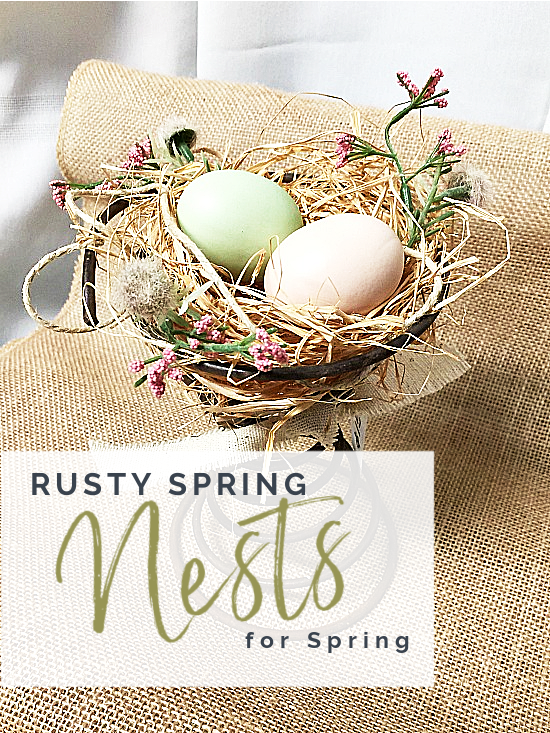 birds nest with eggs and overlay
