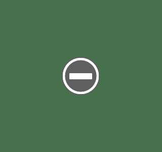 Steel Turbo Flex 360 Flexible 6 Faucet Sprayer Extension Jet Stream Water Saving