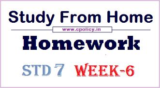 std 7 homework week 6