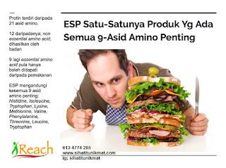9 asid amino dalam esp