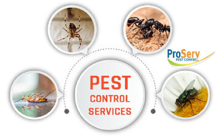 ProServ Pest Pte Ltd: June 2019