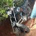 Serra da Raiz: Acidente na Zona Rural deixa 4 feridos nesta segunda-feira (01)