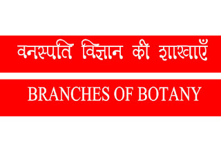 Branches of Botany
