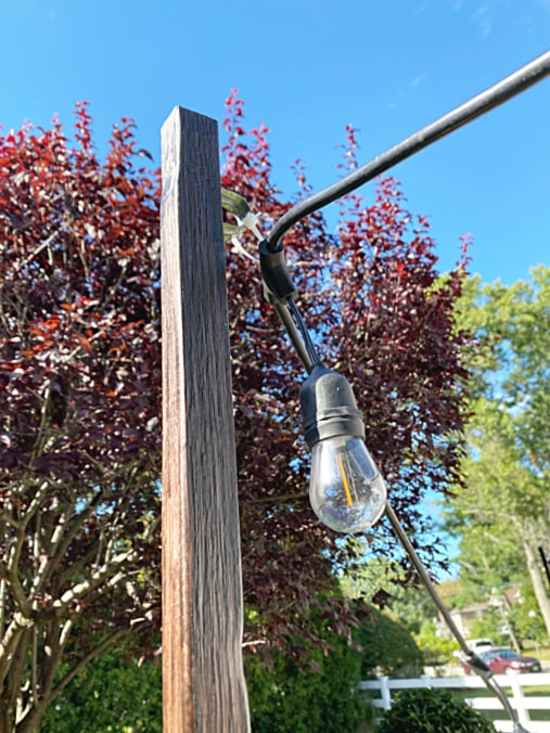 clamp at top of stained pole