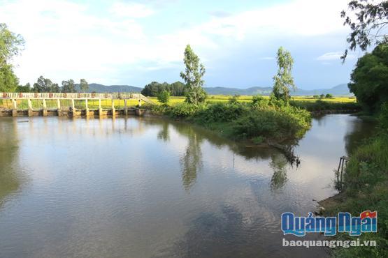 Ngọt thơm cá ngạnh sông Trường