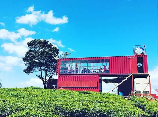 Quán cà phê container ở đồi chè Cầu Đất