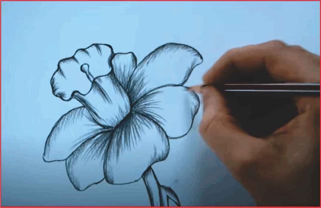 menggambar-flora
