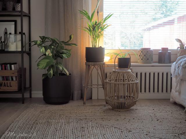 orthex altakasteluruukku viherkasvit arvonta