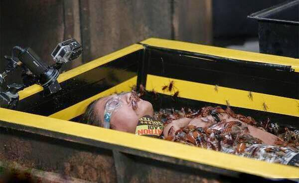 Fear Factor Khatron Ke khiladi Gauhar laying with cockroaches, crickets and spiders in coffin