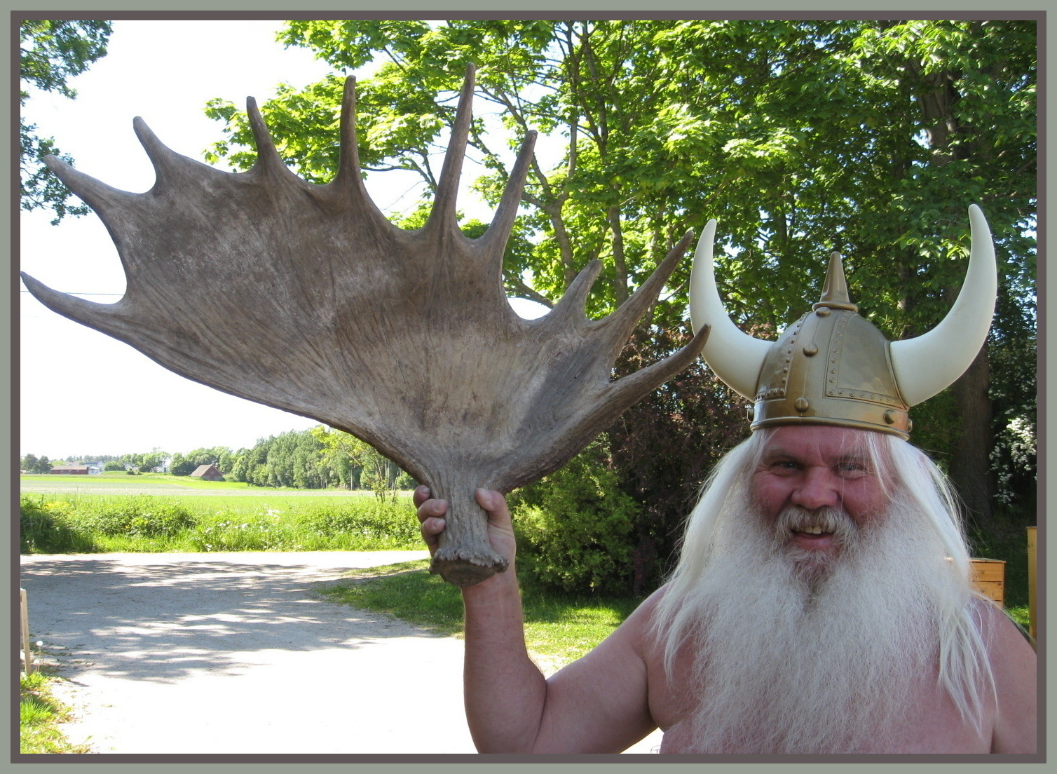 Tom The Wild Norwegian Viking