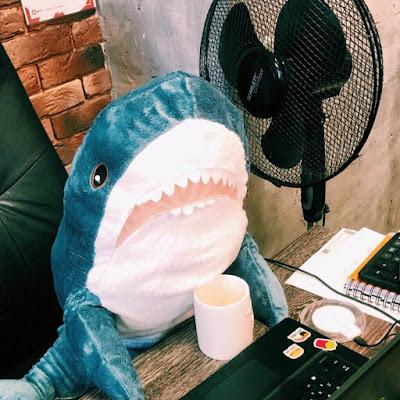 Акула с кофе за компьютером