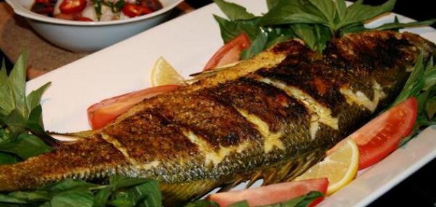 هل من الصحي أكل السمك كل يوم؟