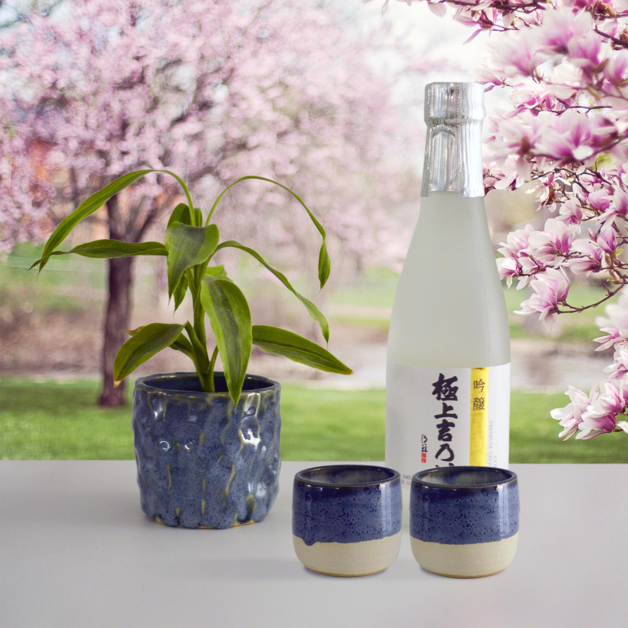 Saké - cold, hot, however you like it