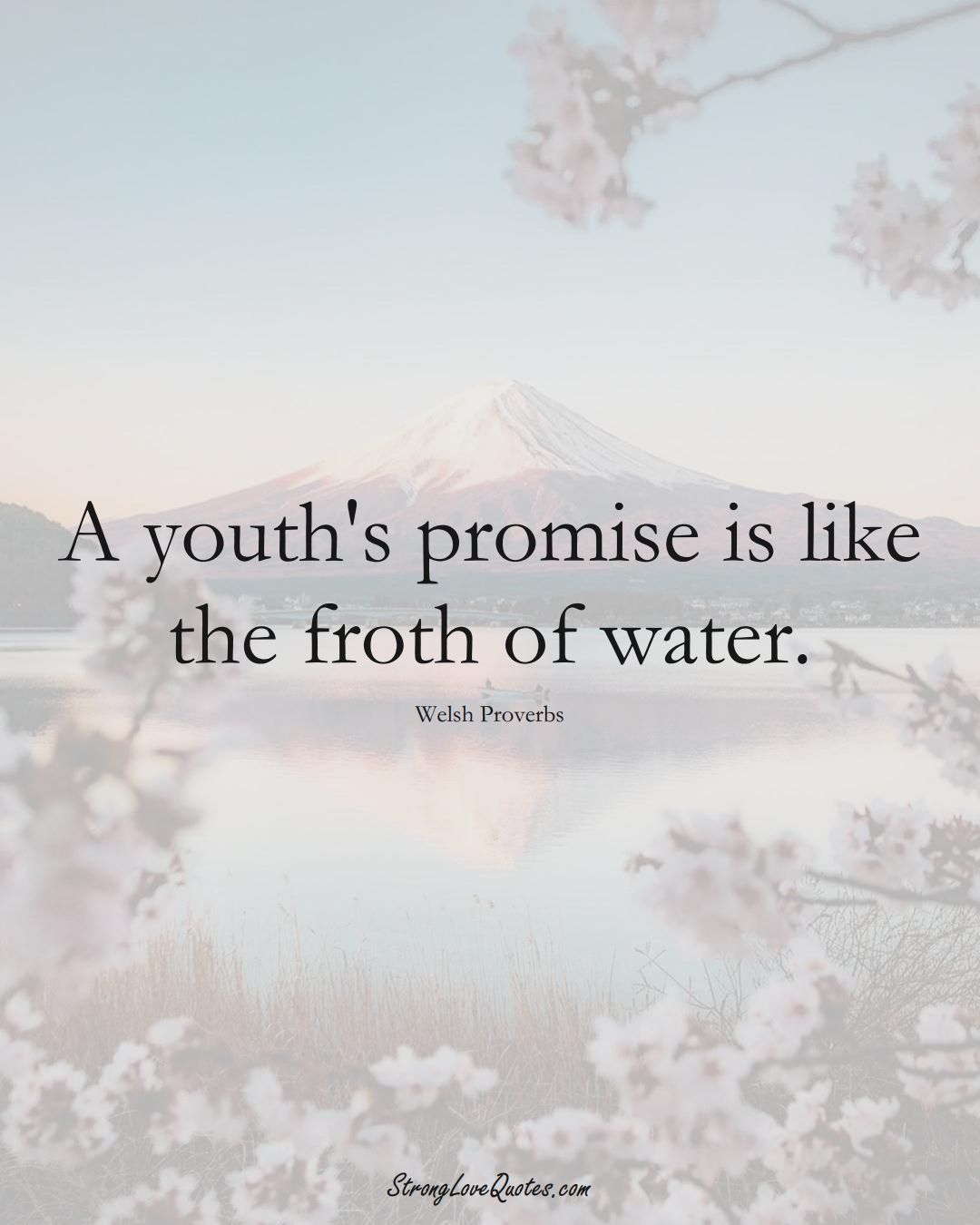 A youth's promise is like the froth of water. (Welsh Sayings);  #EuropeanSayings
