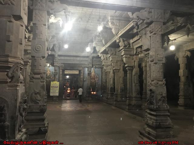 Pataleeswarar Temple Tirupapuliyur