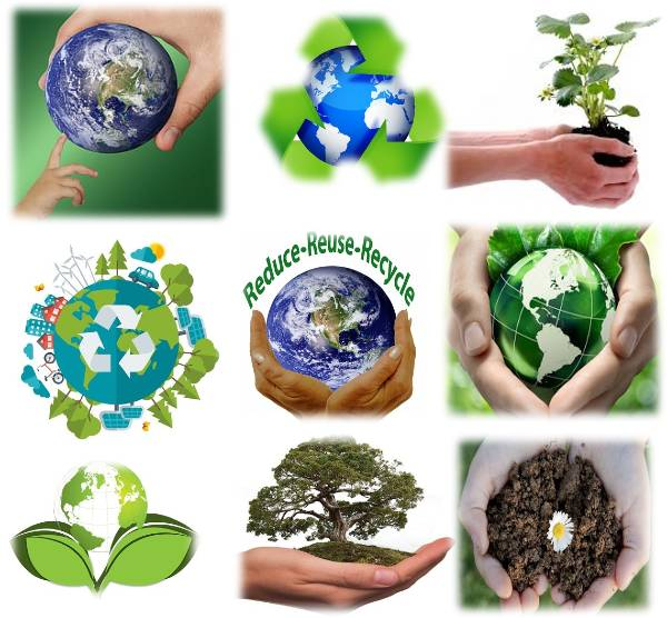 World Environment Day logos, symbols, and colours