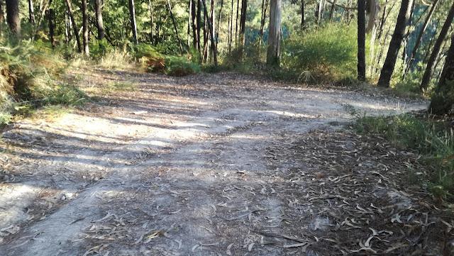 Zonas de curva onde pode ser difícil de subir de carro