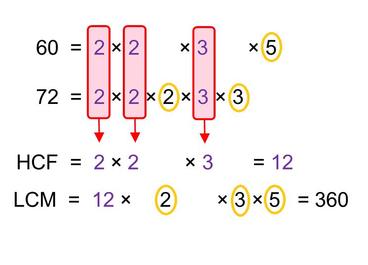 median don steward mathematics teaching  highest common factor