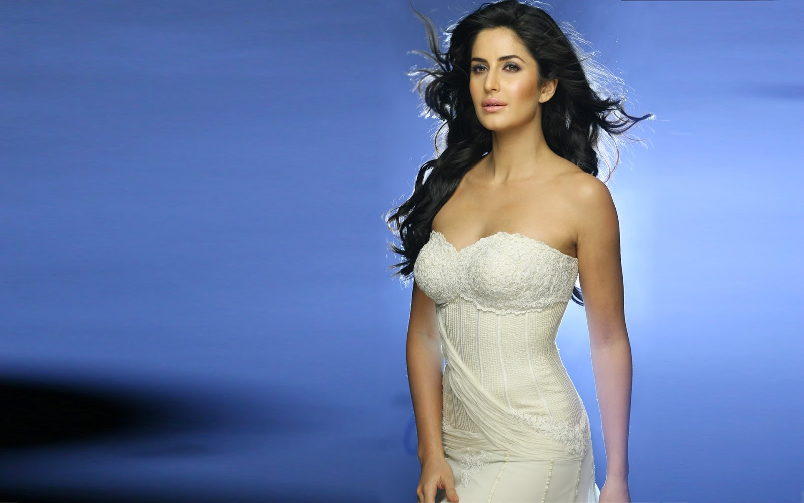 Showbiz Industry Top 10 Hottest Bodies In Bollywood -2340