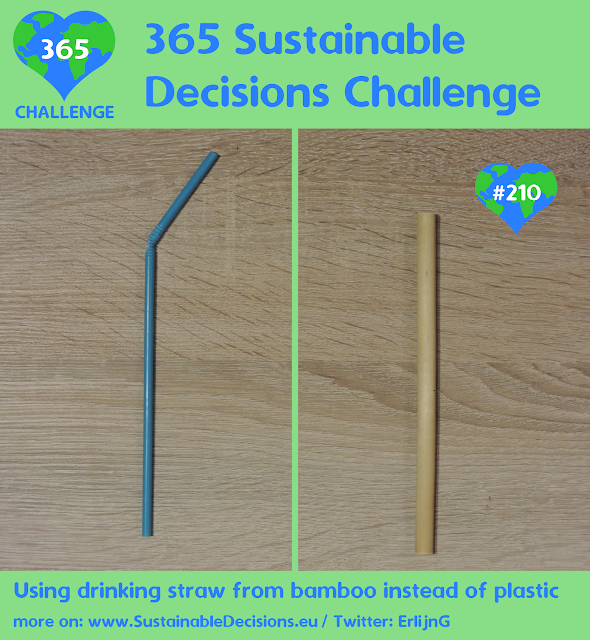 Using drinking straw from bamboo instead of plastic reducing plastic waste sustainability sustainable living