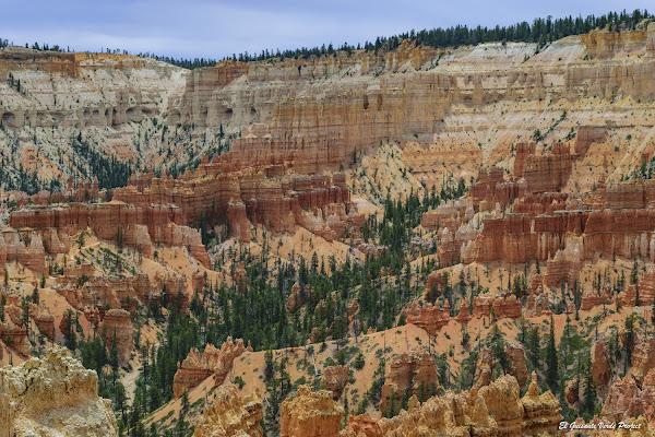 Hodoos en Bryce Canyon - Utah, EEUU por El Guisante Verde Project