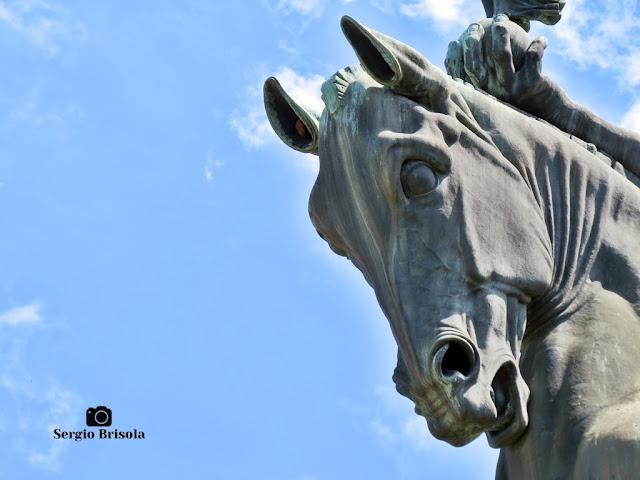Escultura Cavalo Alado (close-up) - Monumento a Ramos de Azevedo