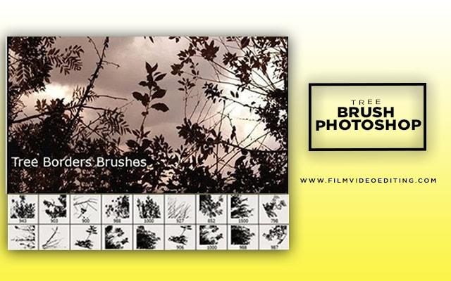 Tree Borders Brushes Photoshop
