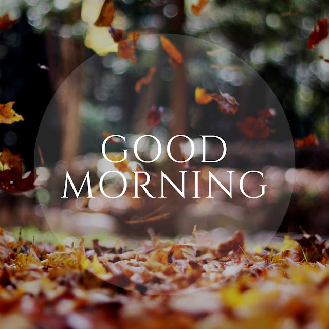 Romantic Good morning sms in love