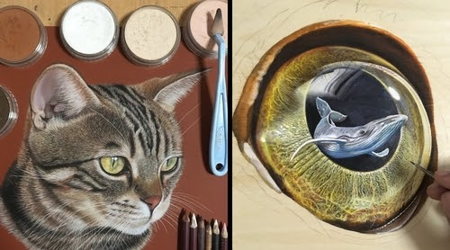 00-Ivan-Hoo-Animals-Translated-to-Realistic-Drawings-www-designstack-co