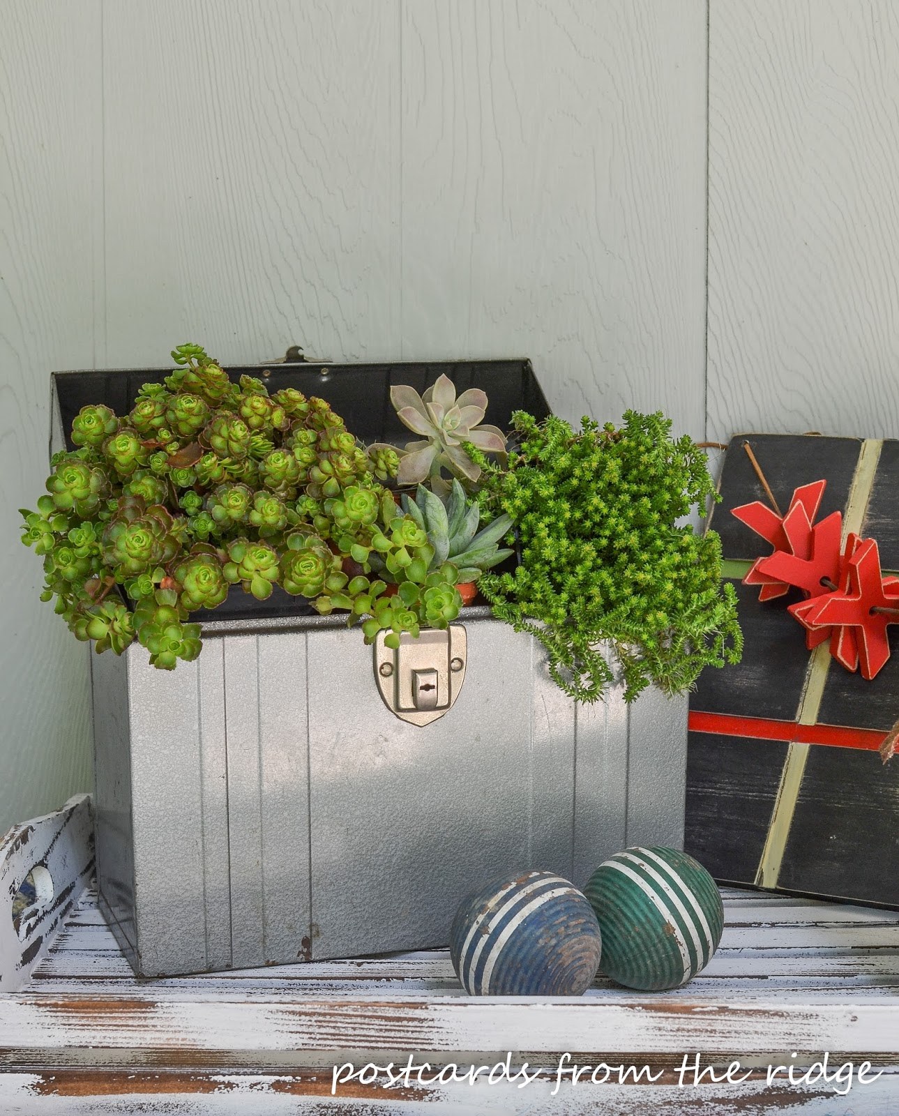vintage metal file folder box with succulents
