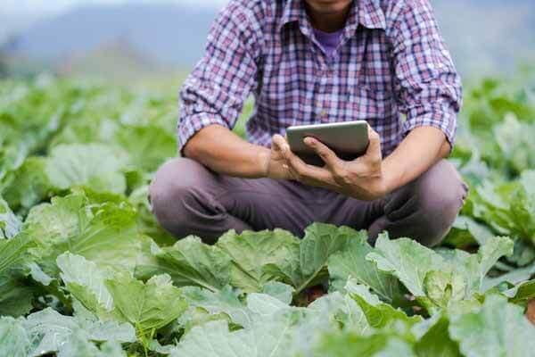 Agriculture App, Agrostar App.