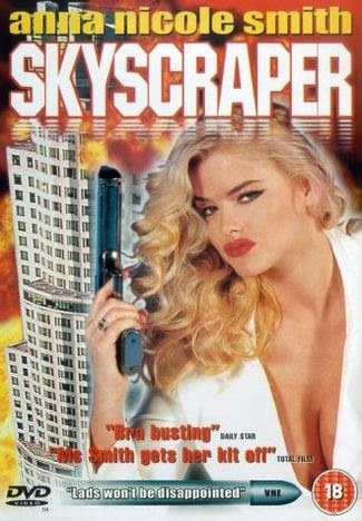 Skyscraper 1996 Hindi Dual Audio 720p DvdRip Uncut 650MB