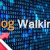 Apa itu BW Atau Blog Walking