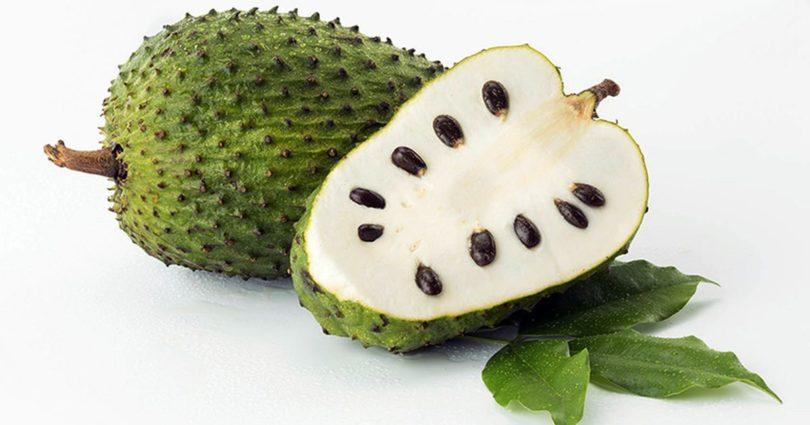 Graviola, é uma fruta tropical que foi encontrada propriedades curativas surpreendentes. A Graviola, folhas, casca e raízes têm sido usadas como sedativos na medicina popular.