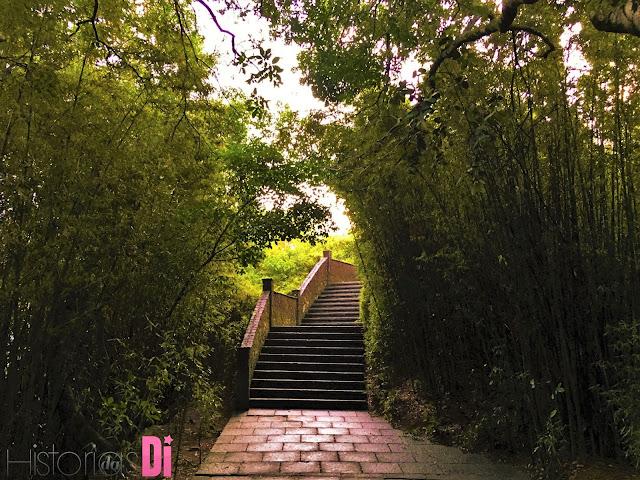 Escada de acesso ao Mirante Dona Marta