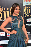 Shriya Saran in Beautiful Transparent Dark Gown IIFA Utsavam Awards 2017 064.JPG