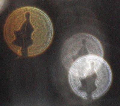 tree shape in orb
