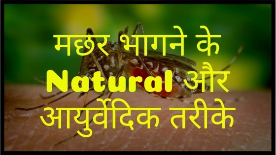 Natural Homemade Mosquito Killer and Repellent in Hindi