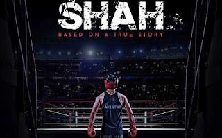 Shah (2015) Urdu Full Movie Free Download 300MB 480p WEB-DL