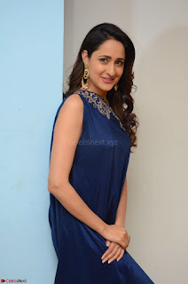 Pragya Jaiswal in beautiful Blue Gown Spicy Latest Pics February 2017 015.JPG