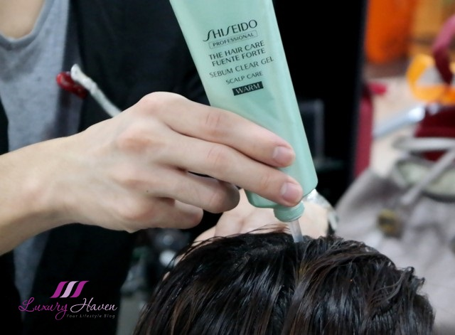 shiseido hair care fuente forte sebum clear gel