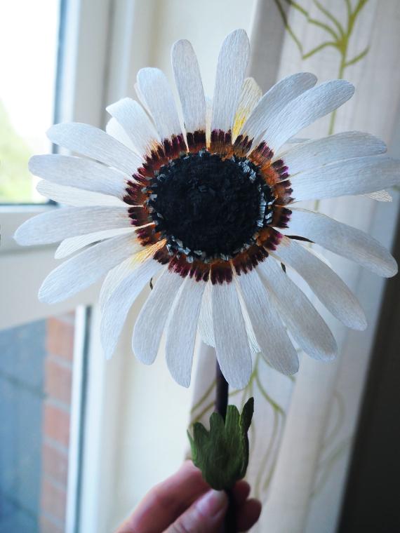 Floral Stories Workshop Weekendownik