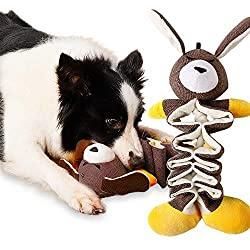 Spielzeug für Hunde gefüllt