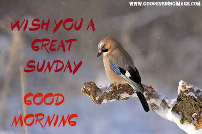Good Morning sunday hd images